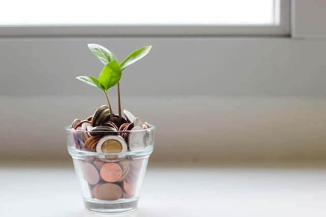 subsidieregeling Nationaal Groeifonds
