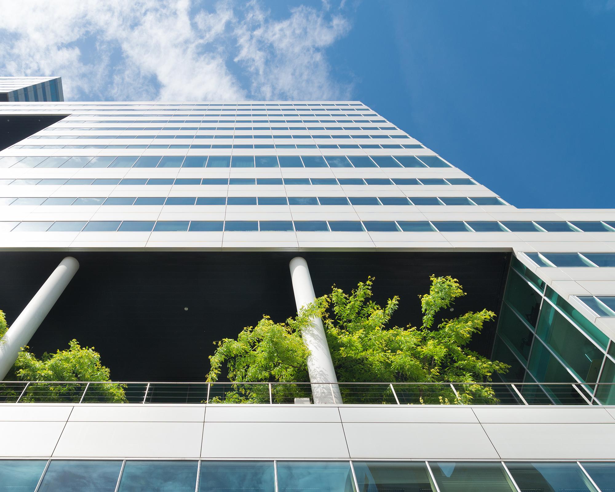 Maand van de Aarde: tien verduurzamingstips voor bedrijven